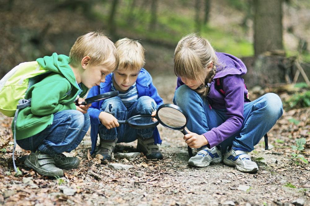 Kids play outdoorsq